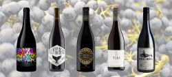 Photo for: Top 10 Pinot Noir Wines Hand-Picked By Sommeliers