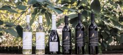 Photo for: Sustainable, family-centric South African wines from Florida - The Inquisitor Wine Company