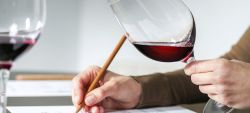 Photo for: Top Sommeliers of USA To Judge Wines for Restaurants