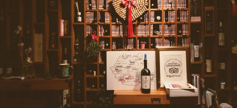Photo for: Top Wine Books Written By Sommeliers For Wine Lovers