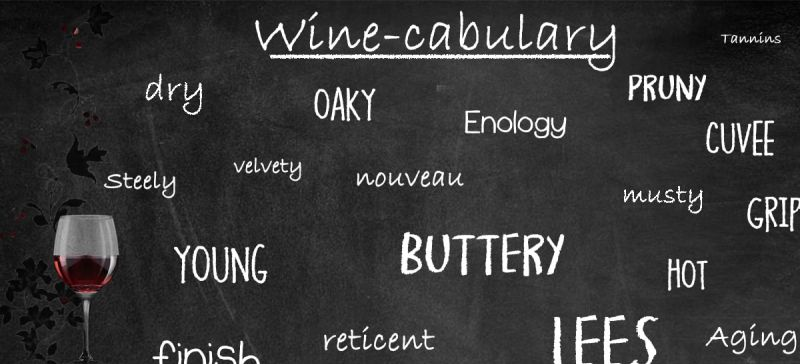 Photo for: Glossary of Wine Tasting Terms And Their Meaning