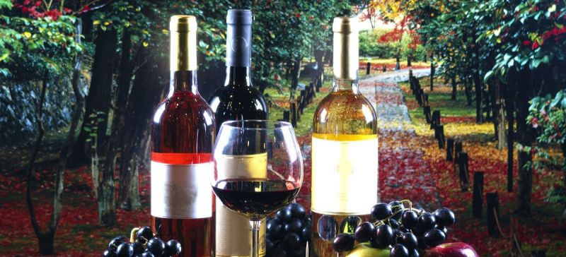 Photo for: Shades Of A Wine